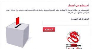 اعرف رقم اللجنة الانتخابية ومقرات انتخابات الرئاسة بالرقم القومى فى 5 ثوانى